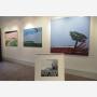 exposition-galerie-aude-guirauden-10