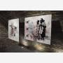exposition-galerie-aude-guirauden-8
